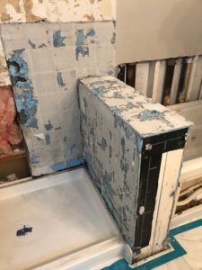 Asbestos Remodel Bathroom Mold 1