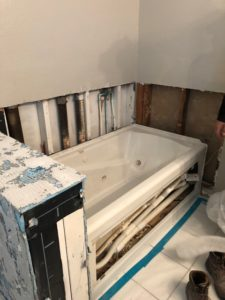Asbestos Remodel Bathroom Mold 2
