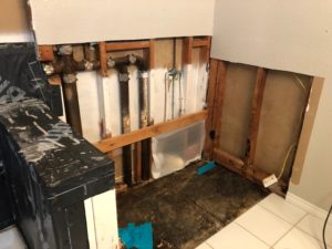 Asbestos Remodel Bathroom Mold 4