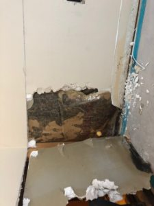 Bathroom Mold Asbestos Removal 3